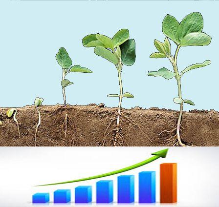 Стимуляторы роста